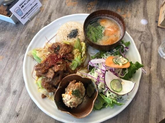 Being Vegetarian in Osaka (Part 1) - Restaurants